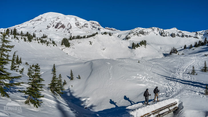 Photo from Mount Rainier National Park, Panorama Point
