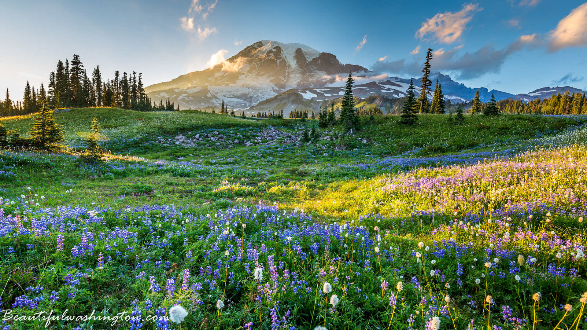 Pictures of washington state parks Sports News & Articles Scores, Pictures, Videos - ABC News