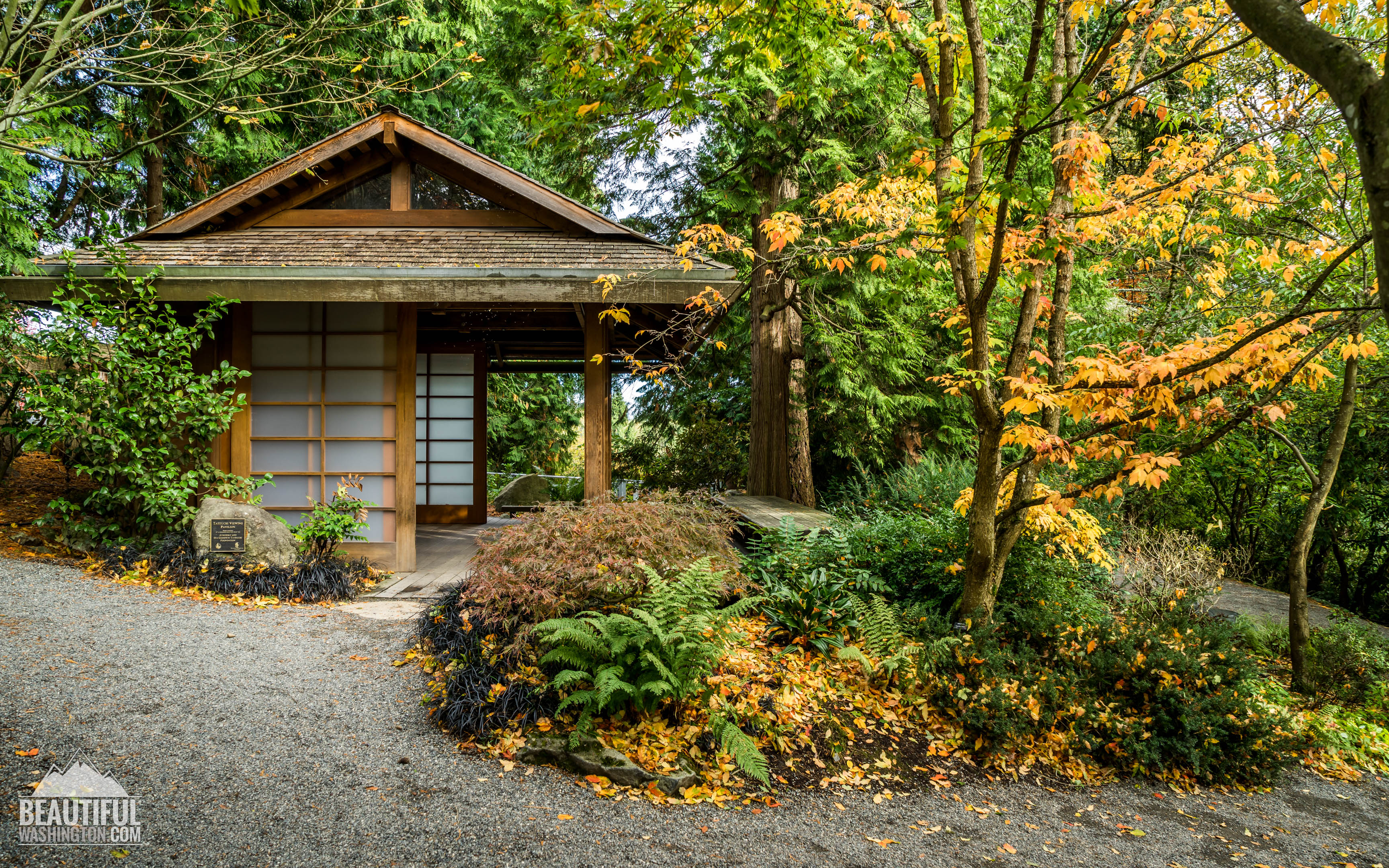 Bellevue botanical gardens hours bellevue botanical for Botanical gardens hours