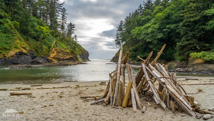 Photo from the Cape Disappointment Trail, located in Cape Disappointment State Park, Long Beach Area, Pacific County