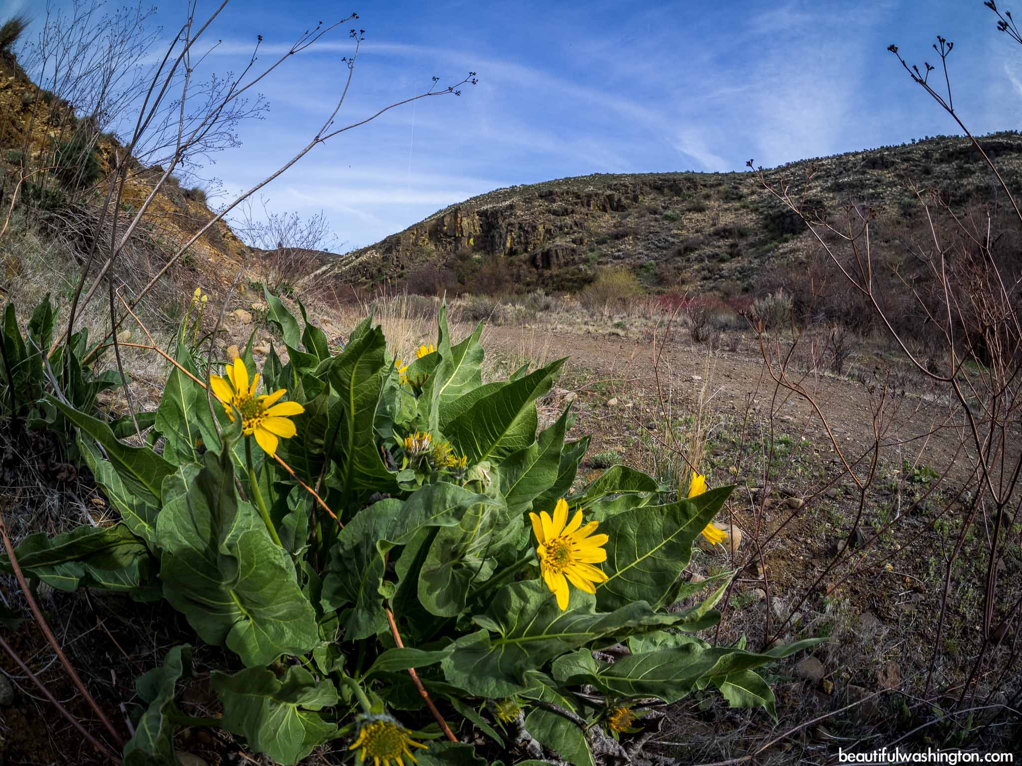 Photo from Eastern Washington, Yakima, Cowiche Canyon