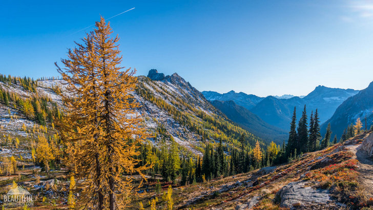 Photo taken from Cutthroat Pass Trail in the North Cascades,Washington state