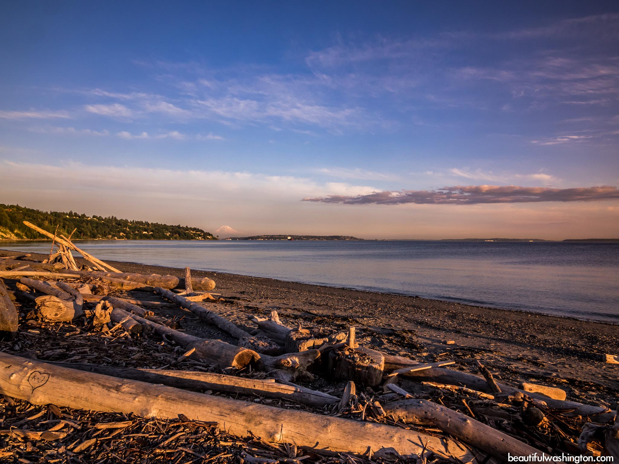 Discovery Park 55