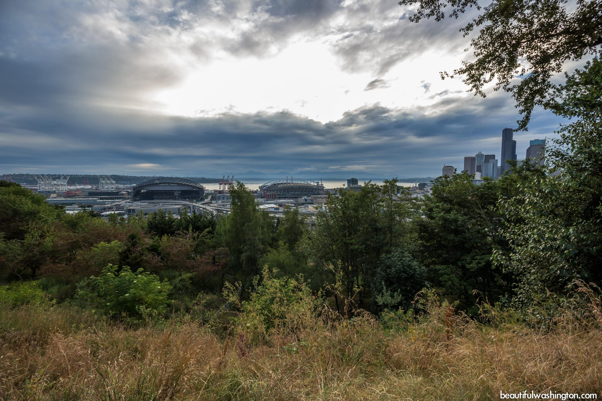 Photo from King County, Seattle, Dr. Jose Rizal Park
