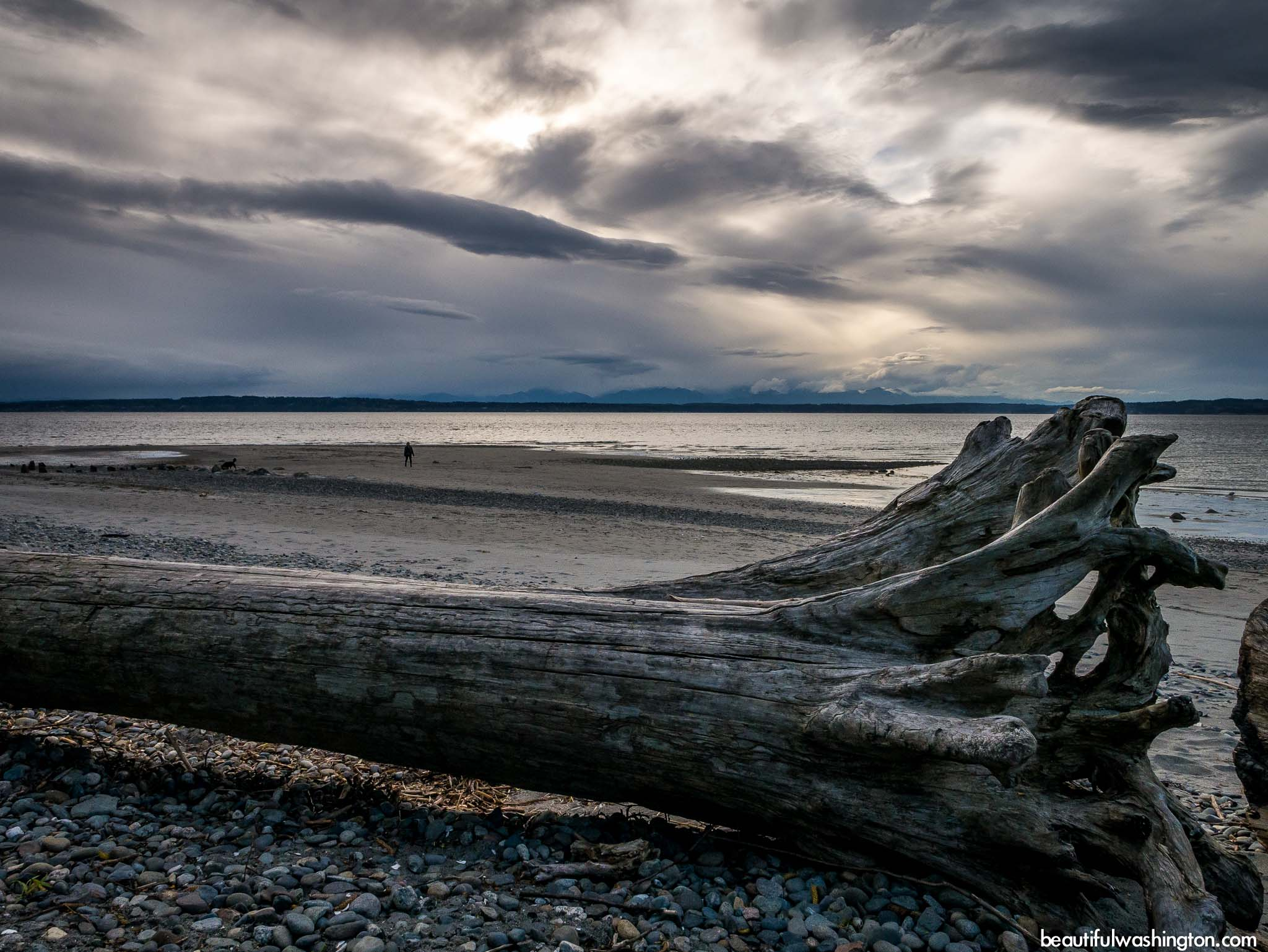 Photo from King County, Seattle, Golden Gardens Park