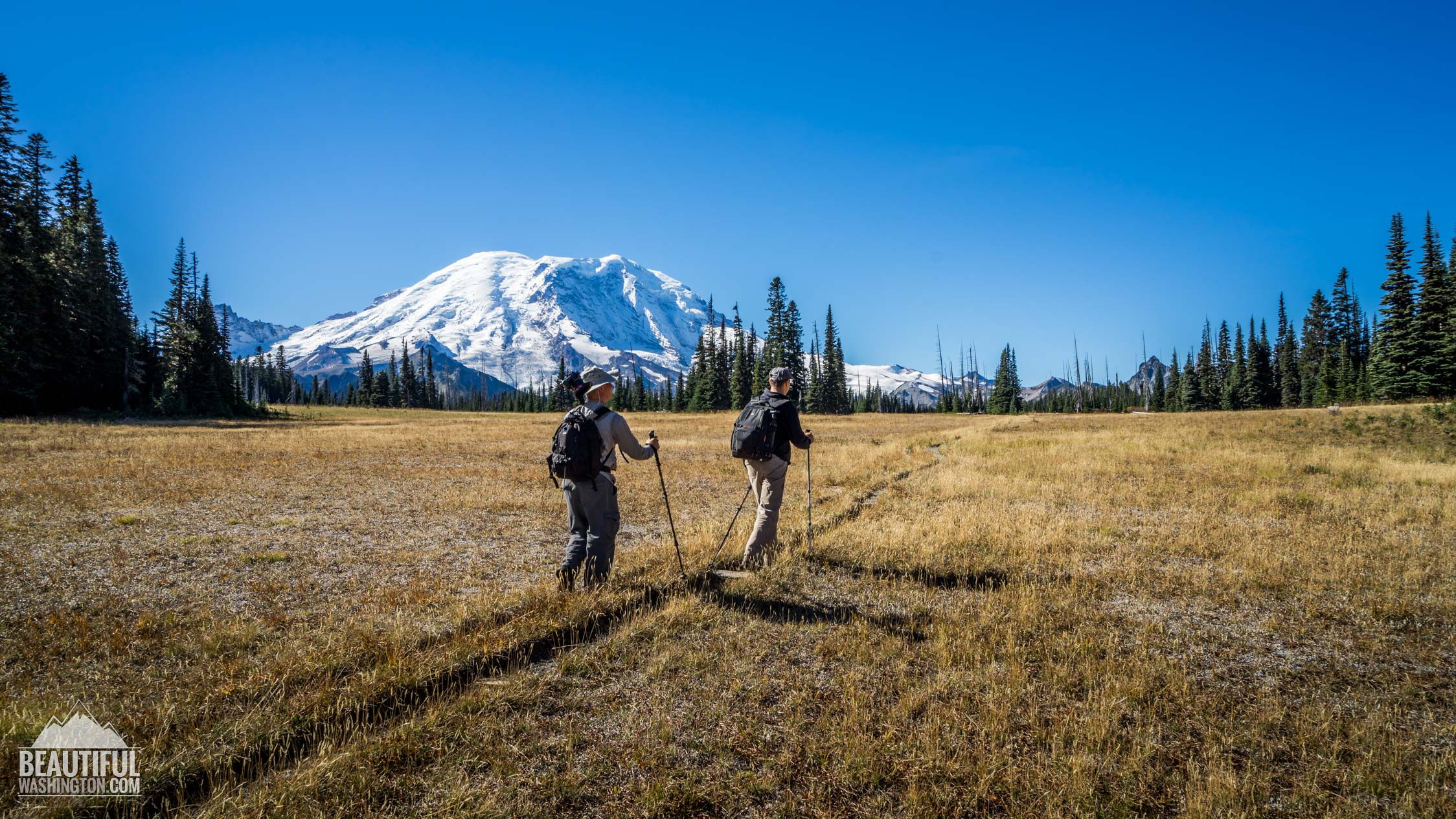 Photo from Mount Rainier National Park, Grand Park Trail