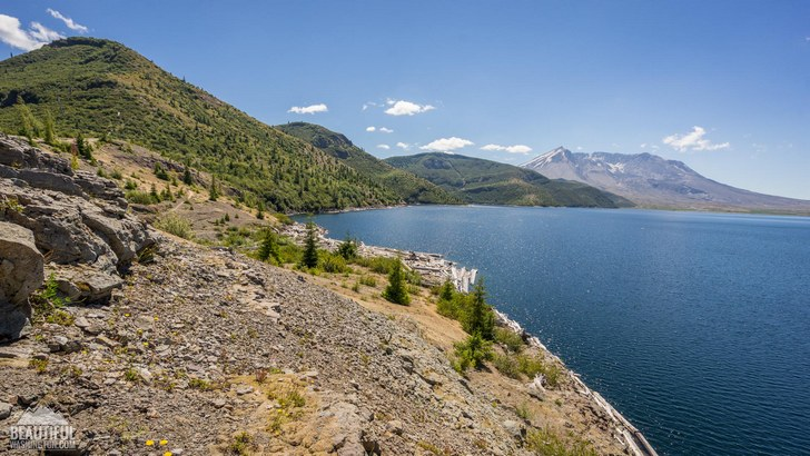 Photo taken from the Harmony Falls Trail, South Cascades Region, Mount St. Helens Area