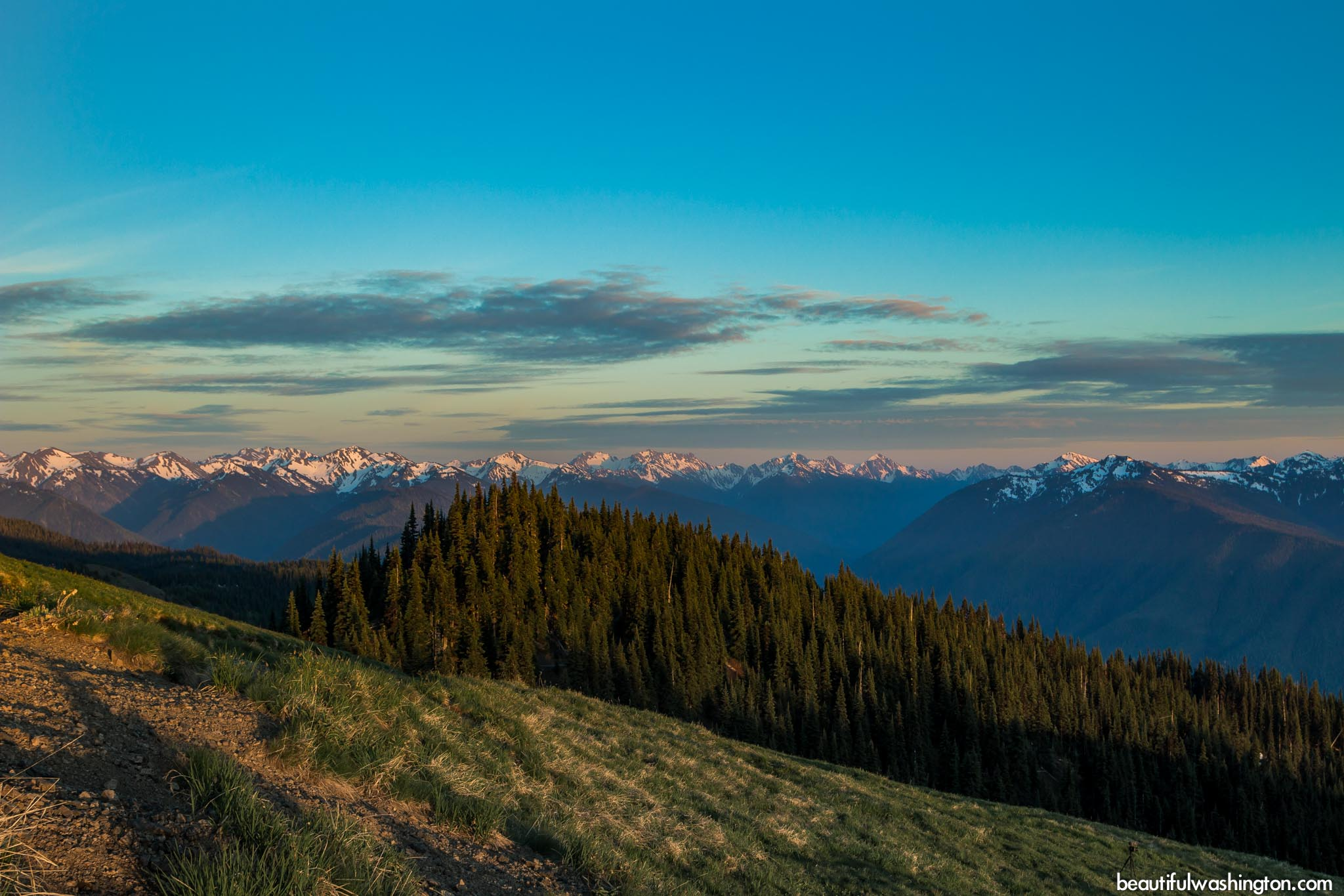 Photo from Olympic Peninsula, Hurricane Hill Trail