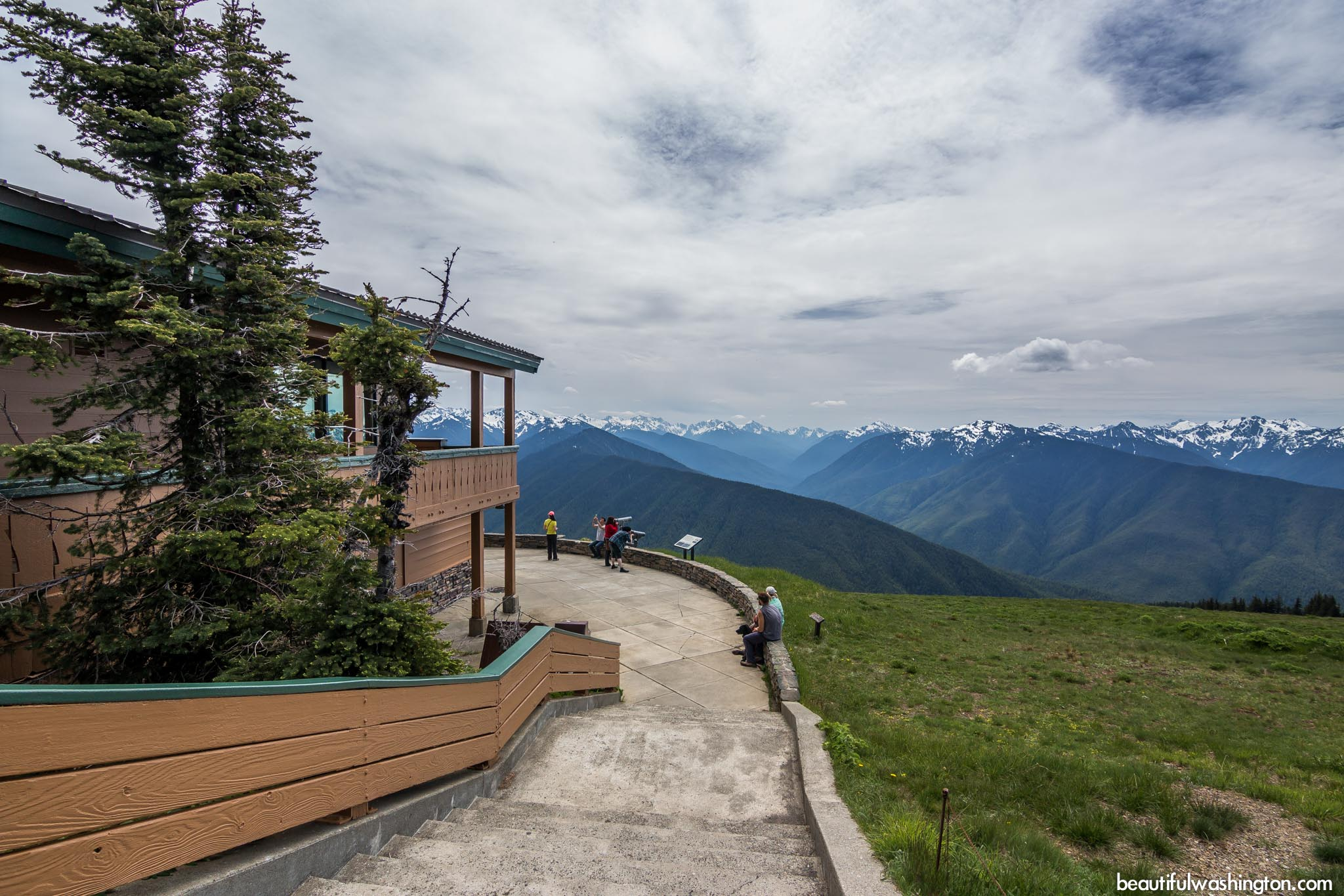 Hurricane Ridge Visitor Center 17