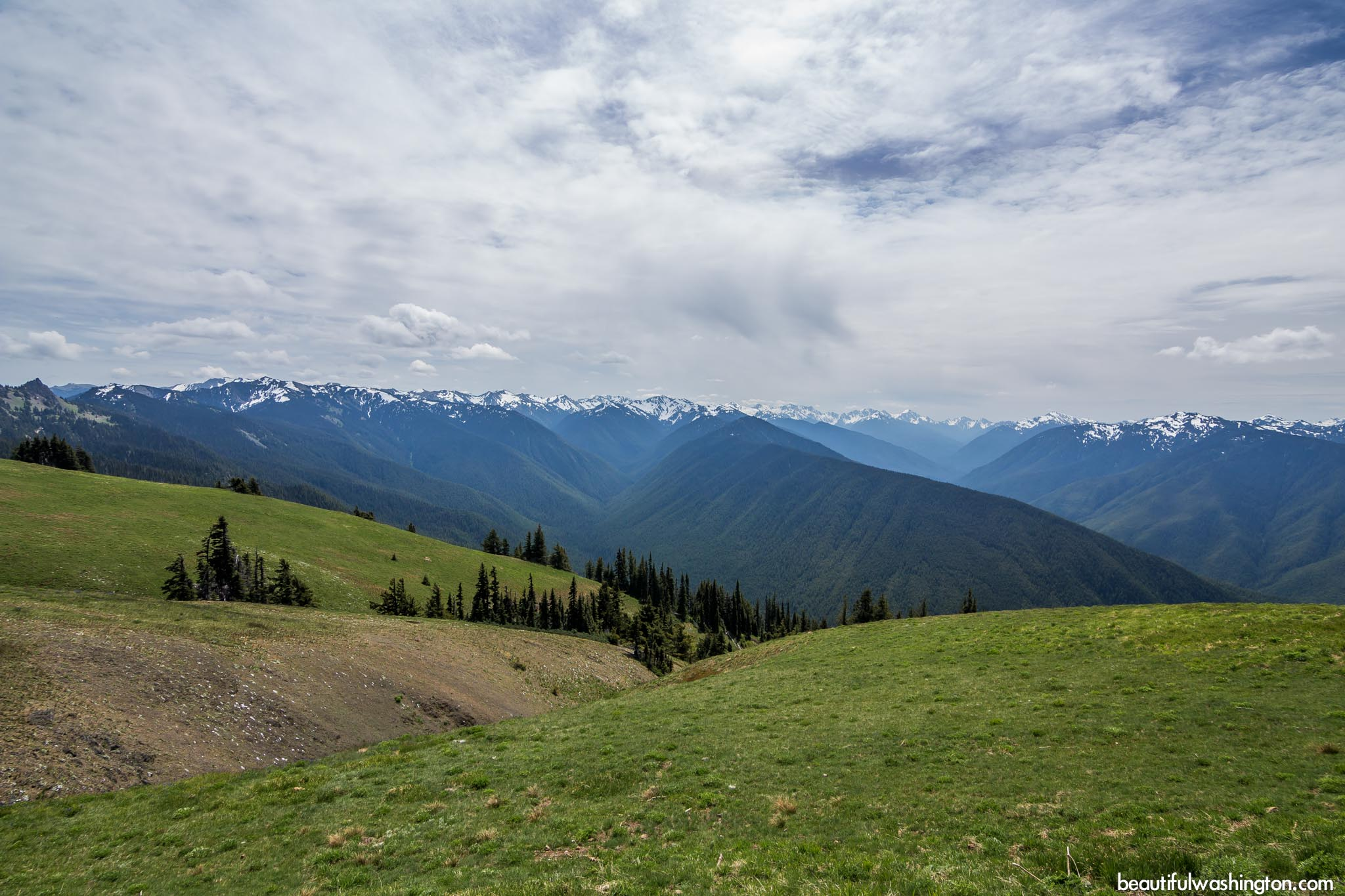 Photo from Olympic Peninsula, Hurricane Ridge Visitor Center