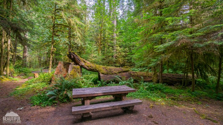 Photo taken at Iron Creek Campground, South Cascades Region, Mount St. Helens area
