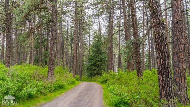 Photo taken at Kamiak Butte County Park Campground, Whitman County