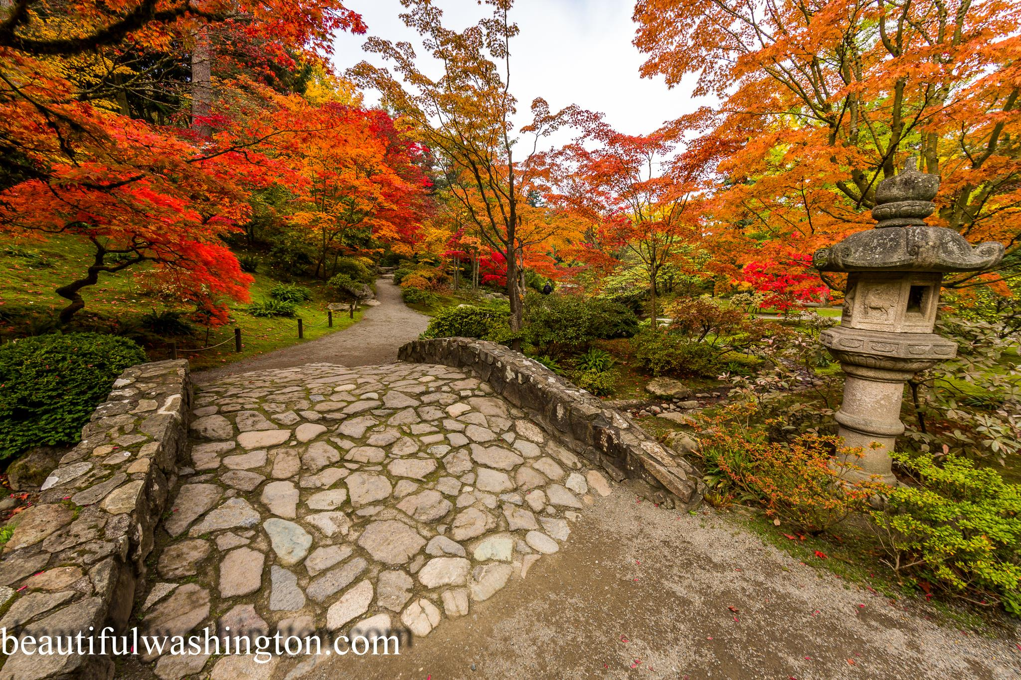 Image Result For Japanese Garden Seattle