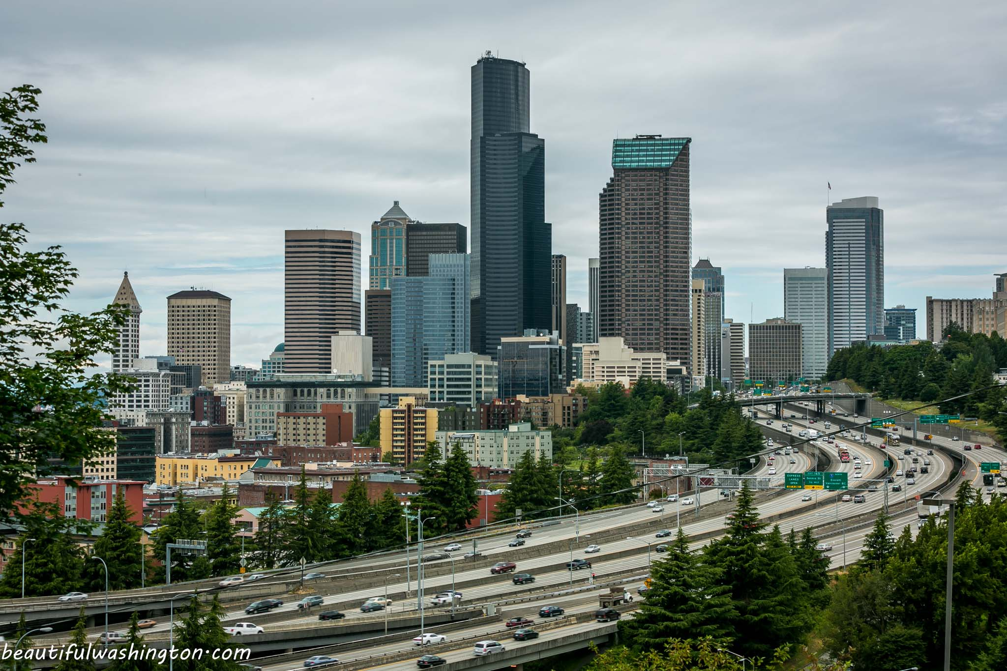 Seattle Beacon Hill Viewpoint 04