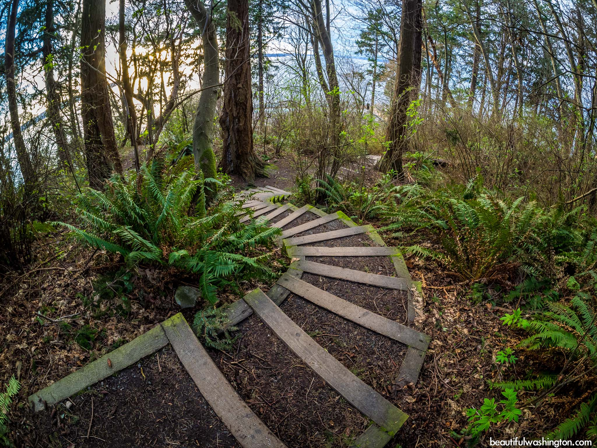 Photo from Lincoln park, King County, Seattle