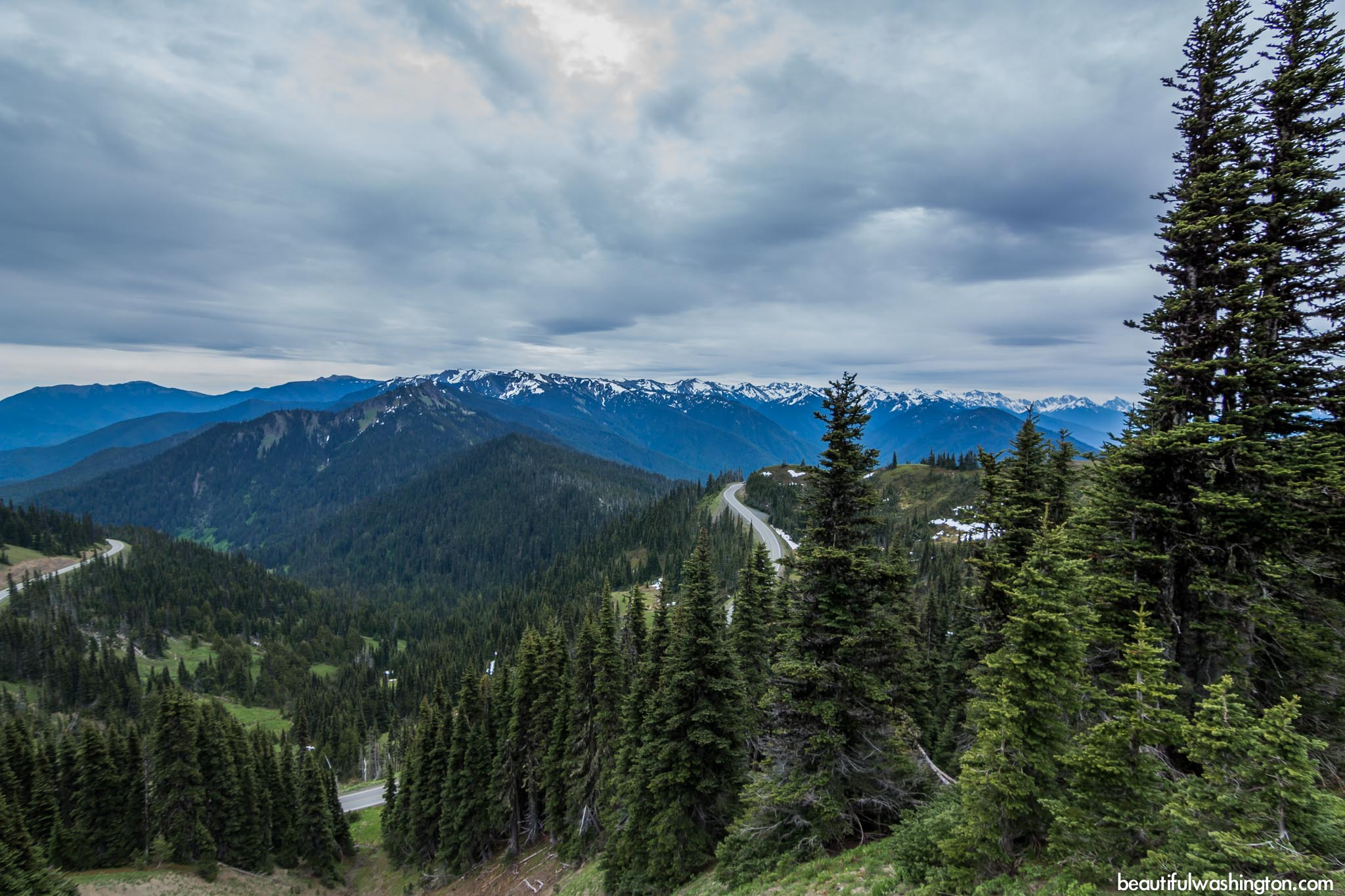 Photo from Olympic Peninsula, Klahhane Ridge