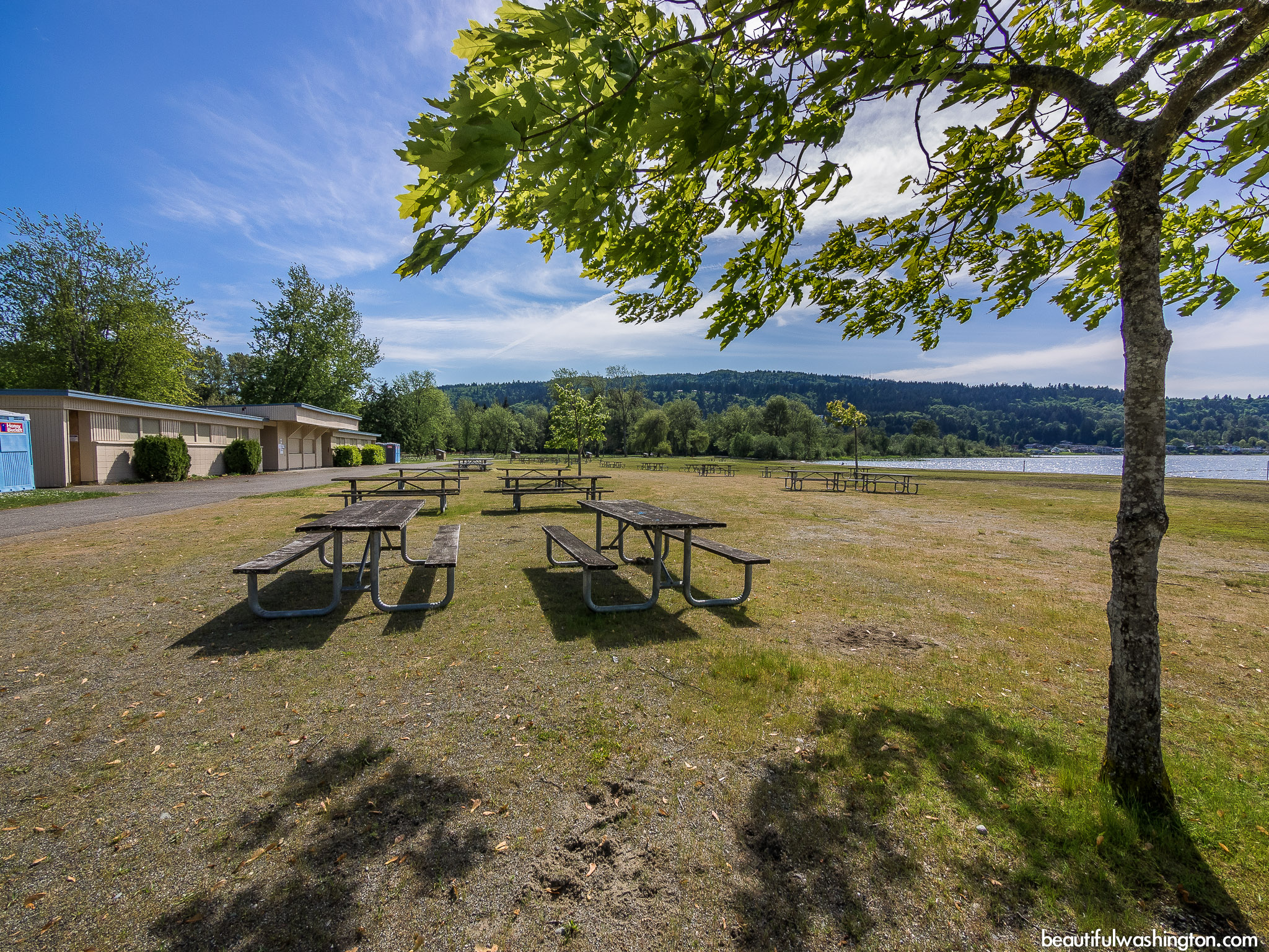 Photo from King County, Sammamish, Lake Sammamish State Park