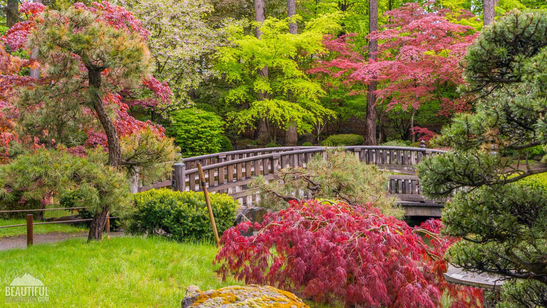 Anese Garden Spokane Garden Ftempo