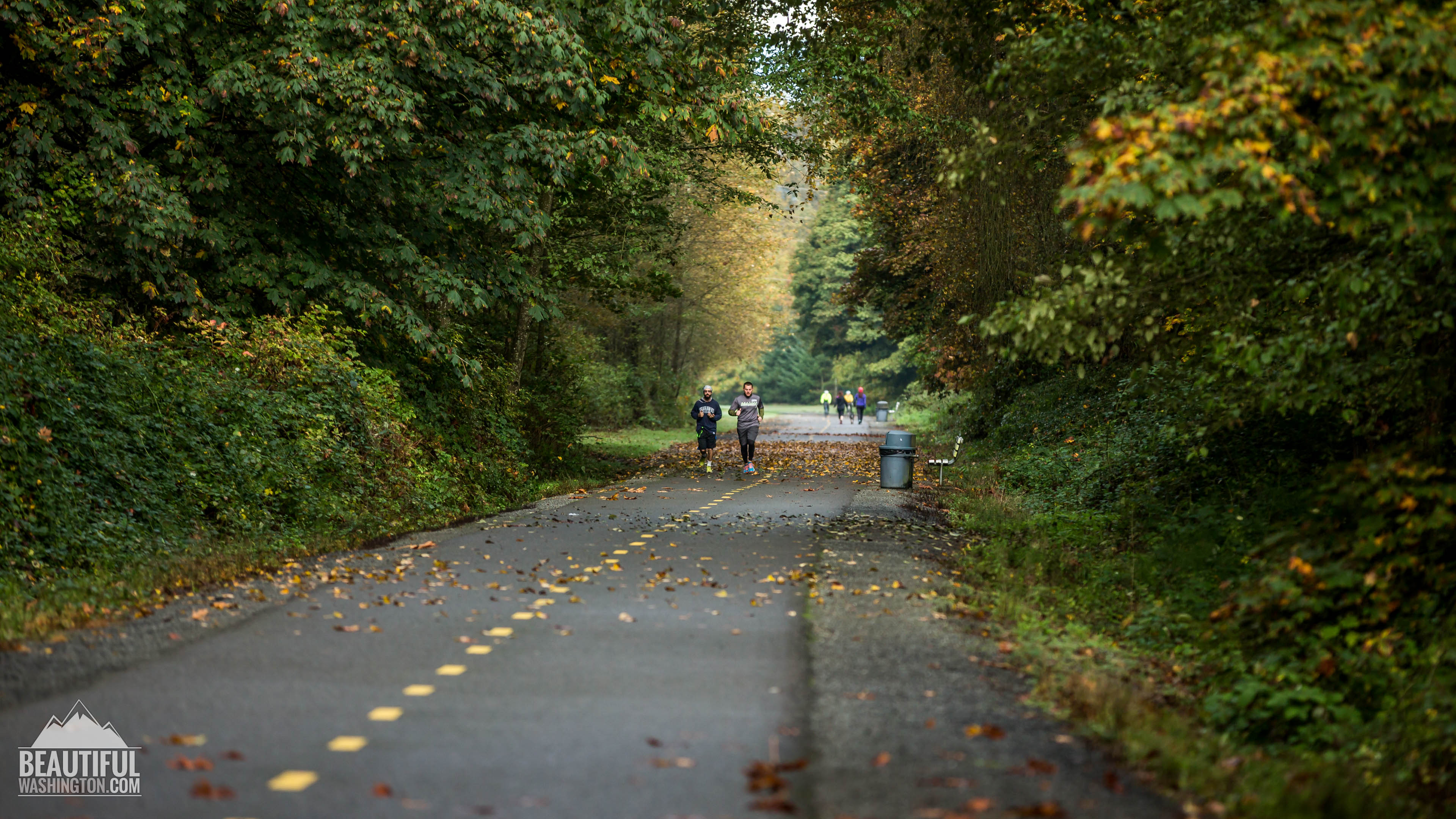Photo from King County, Renton, Maplewood Roadside Park