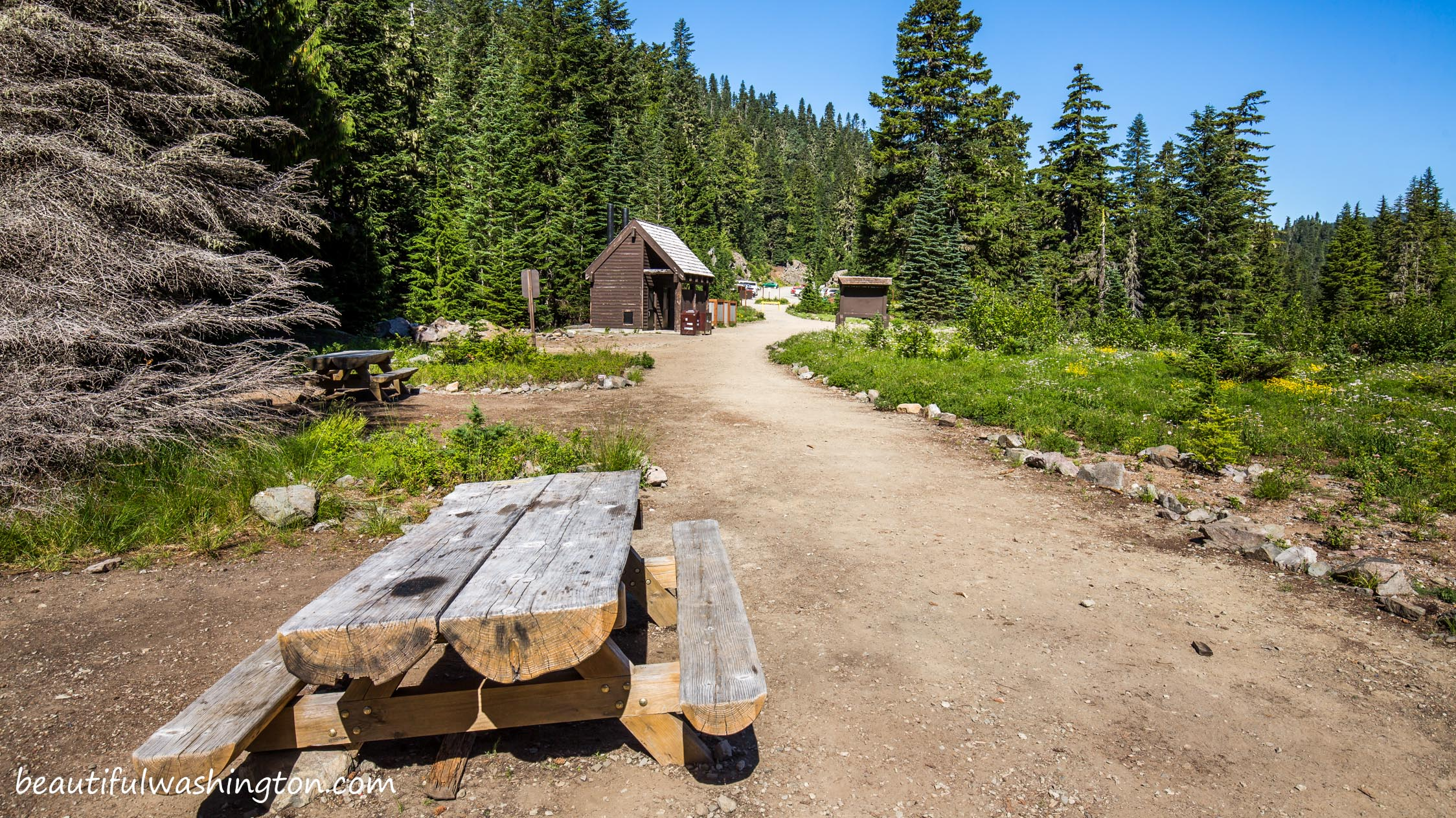 Photo from Mount Rainier National Park, Mowich Lake Campground