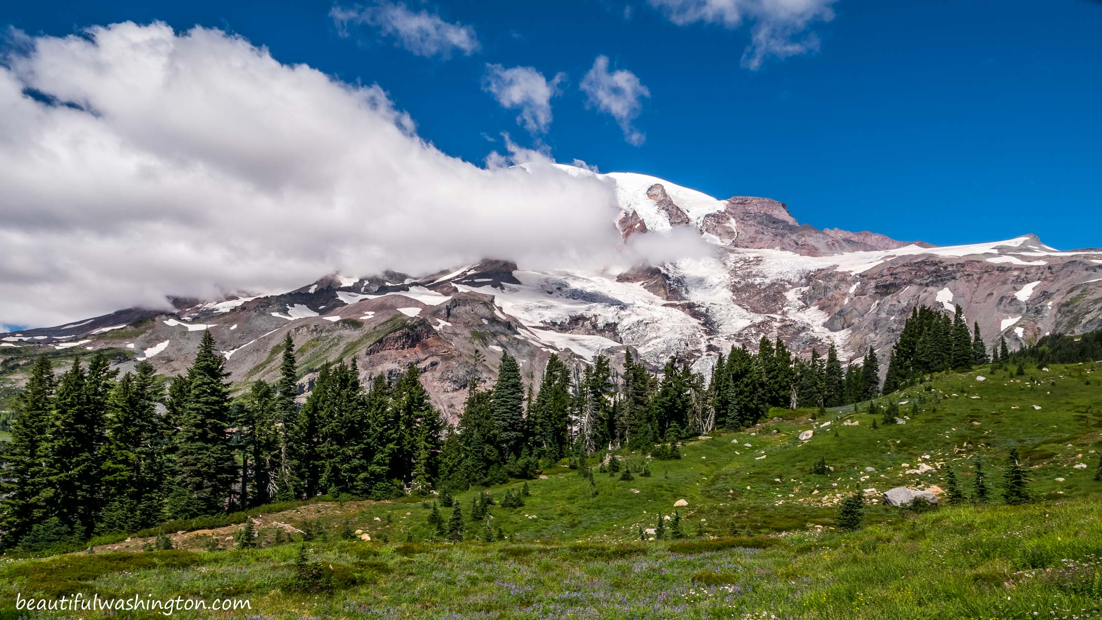 Photo from Mount Rainier, Paradise Area, Paradise Area Trails