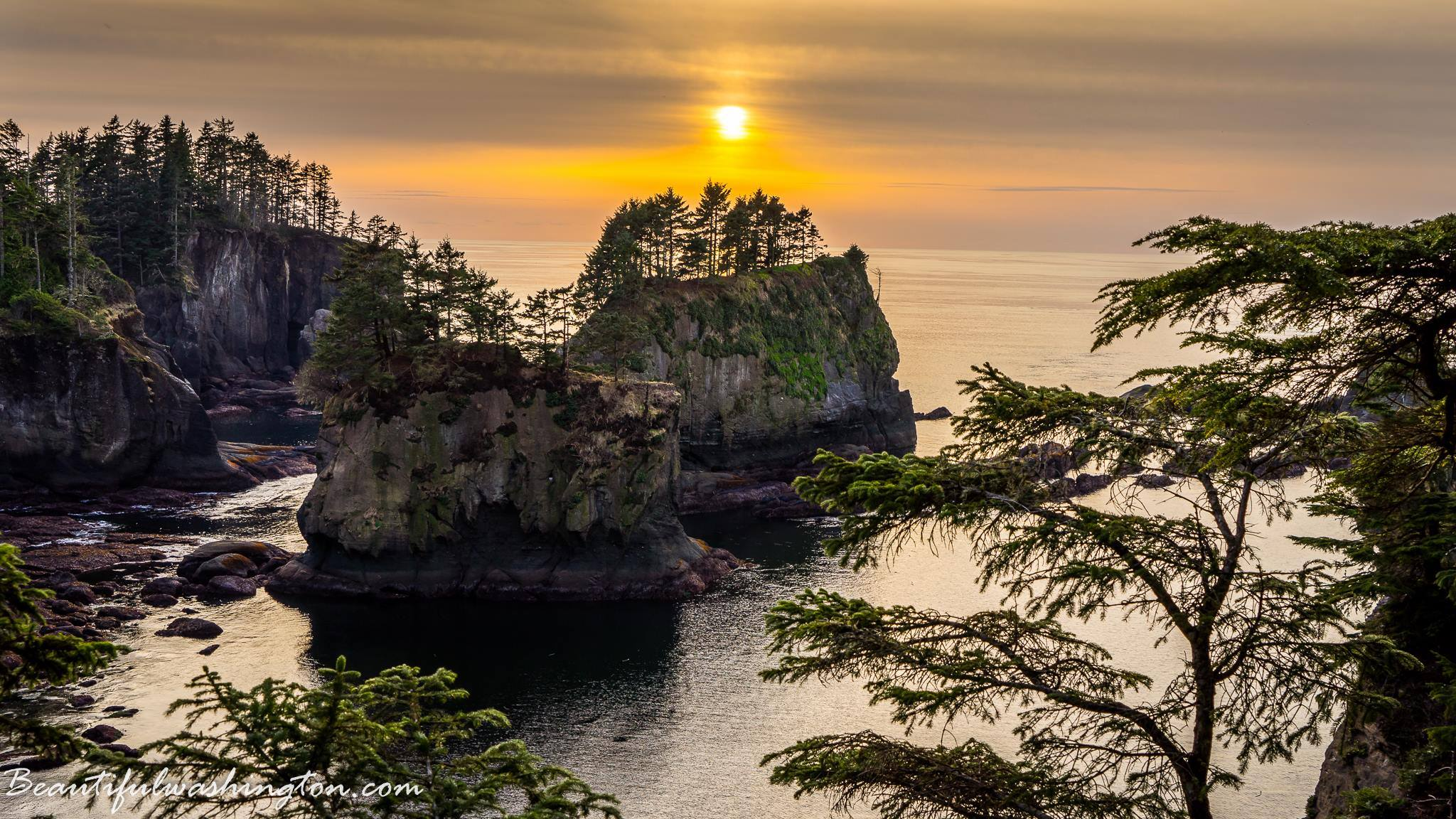 Photo from the Olympic Peninsula Region, Washington State