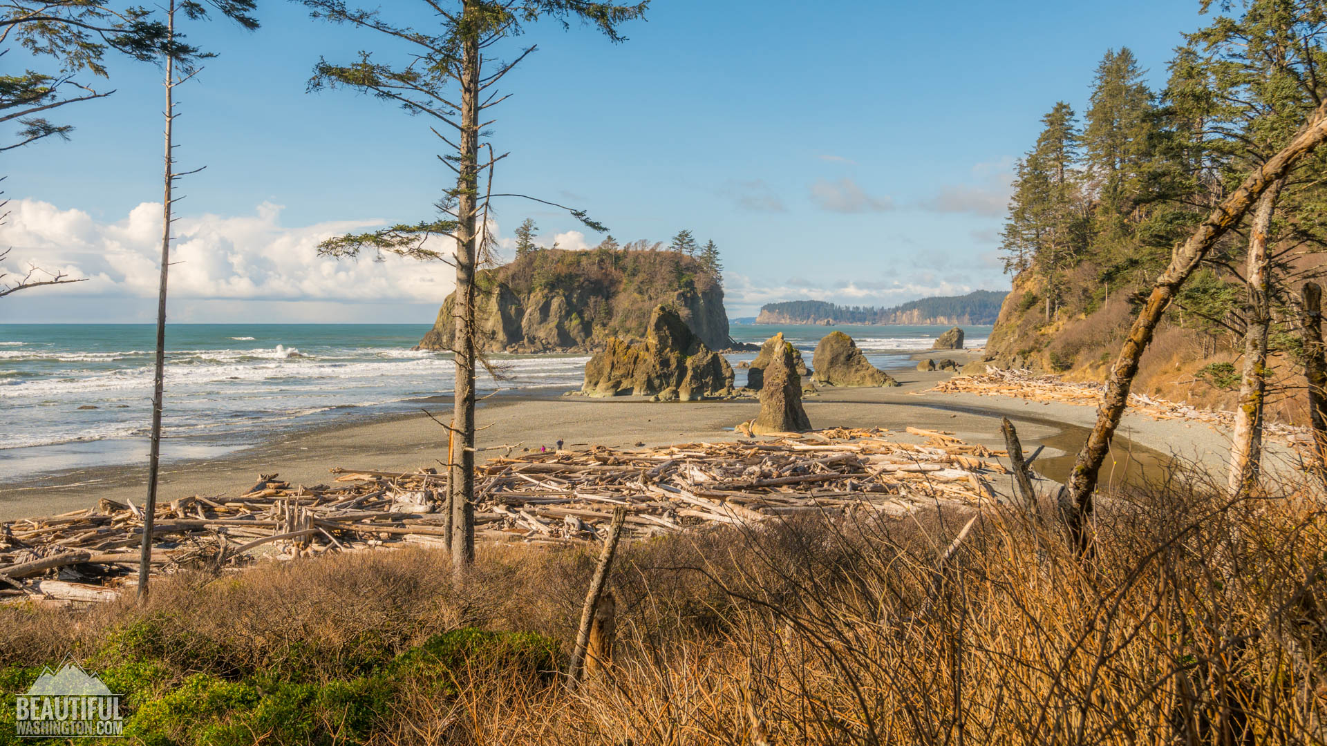 Ruby Beach Washington Lodging The Best Beaches In World