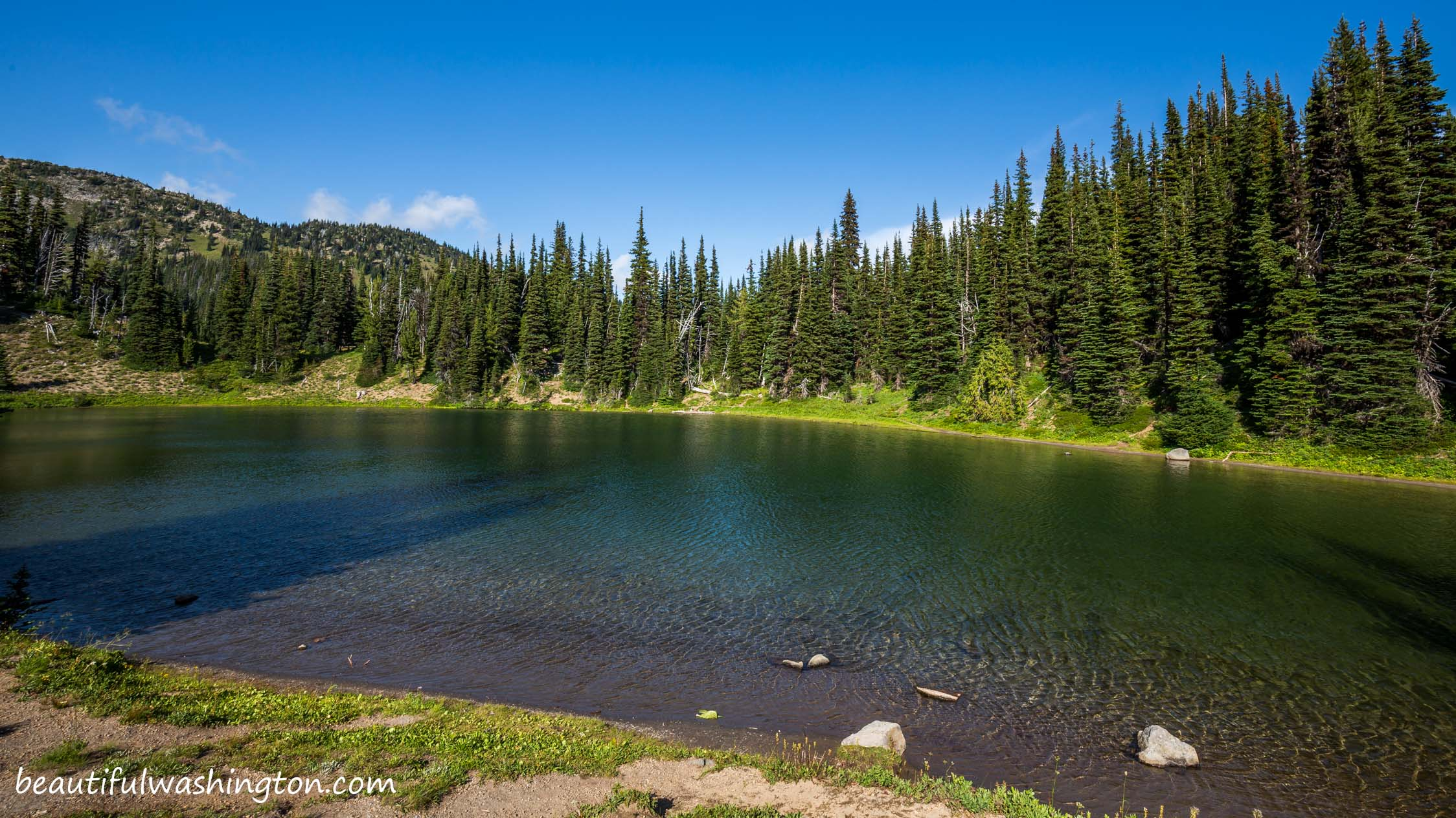 Photo from Mount Rainier, Sunrise Area, Shadow Lake Trail