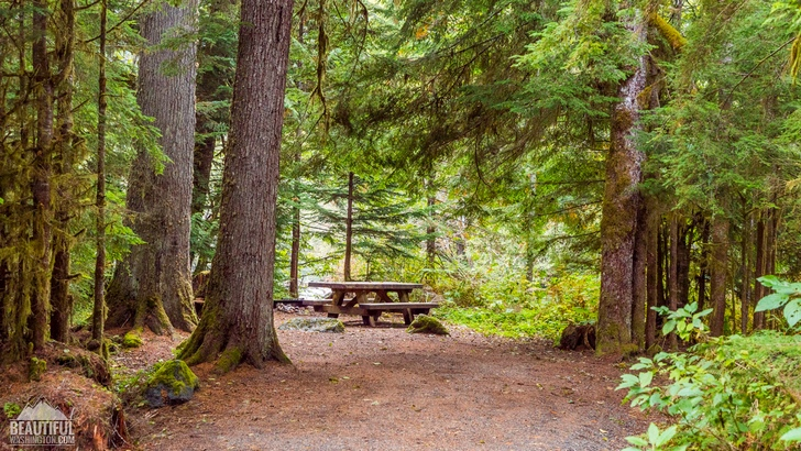 Photo from Silver Fir Campground, North Cascades Region, Mt. Baker area