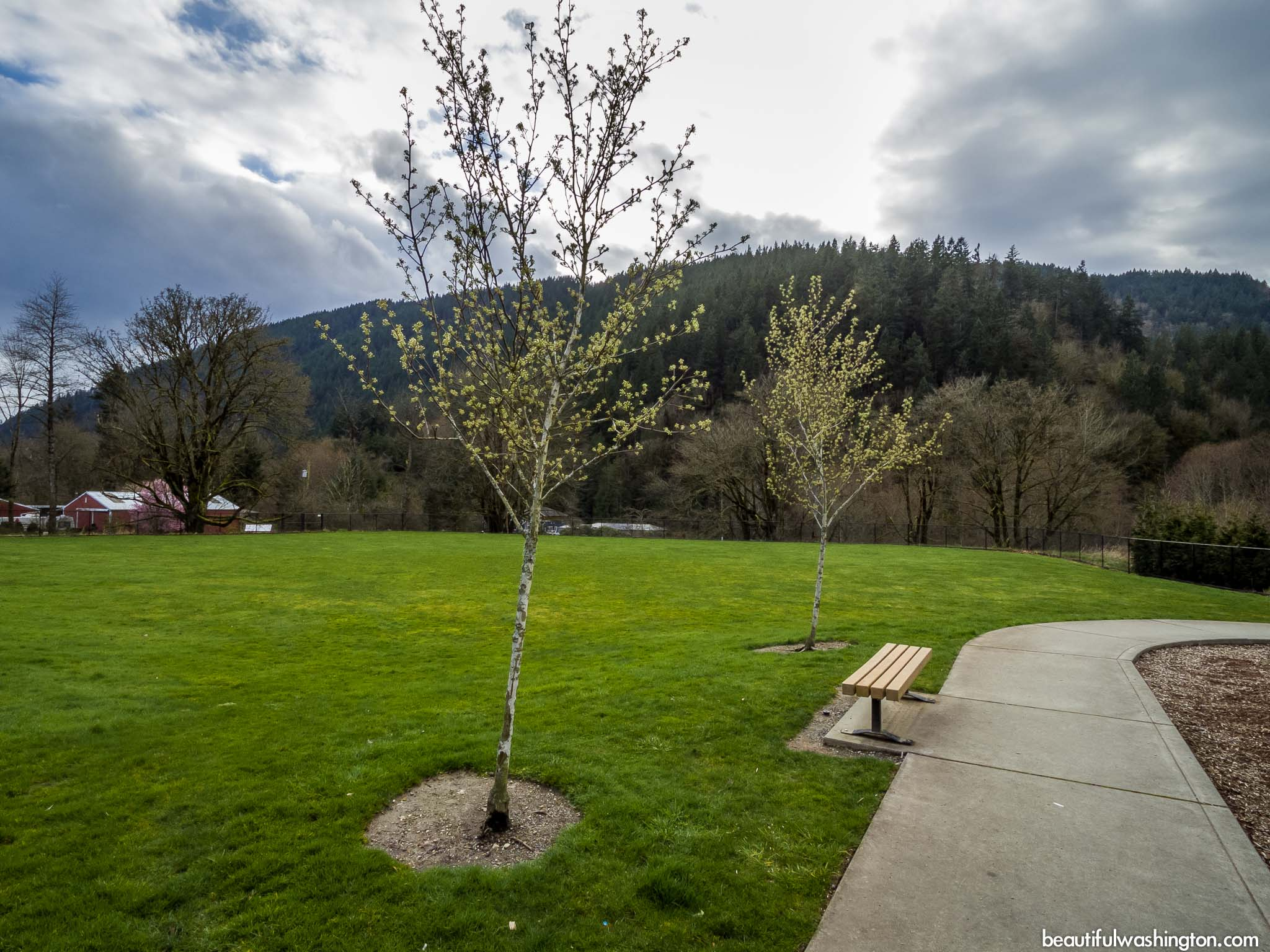 Photo from King County, City of Issaquah, Squak Valley Park