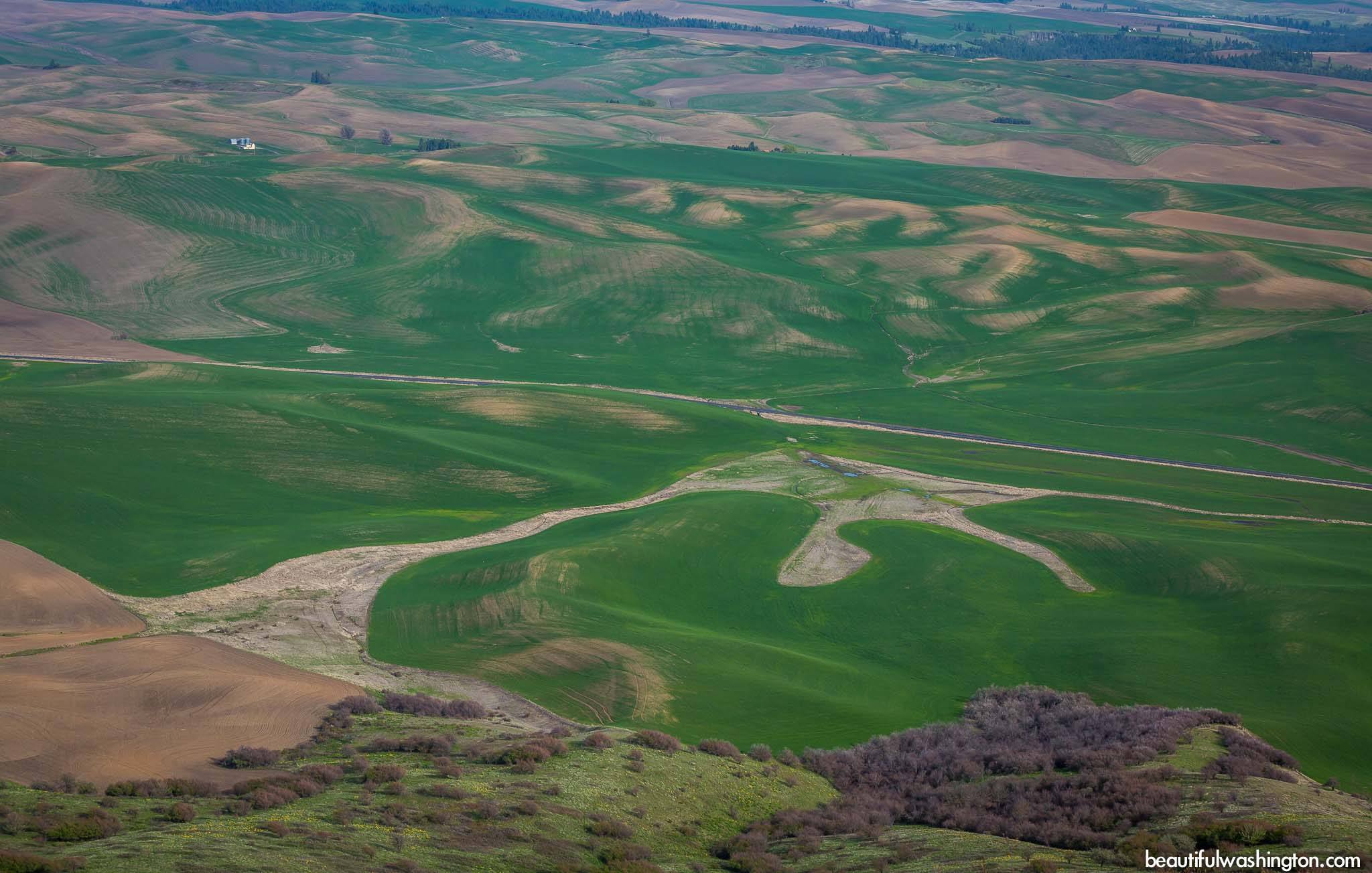 Photo from Eastern Washington, Steptoe Butte State Park