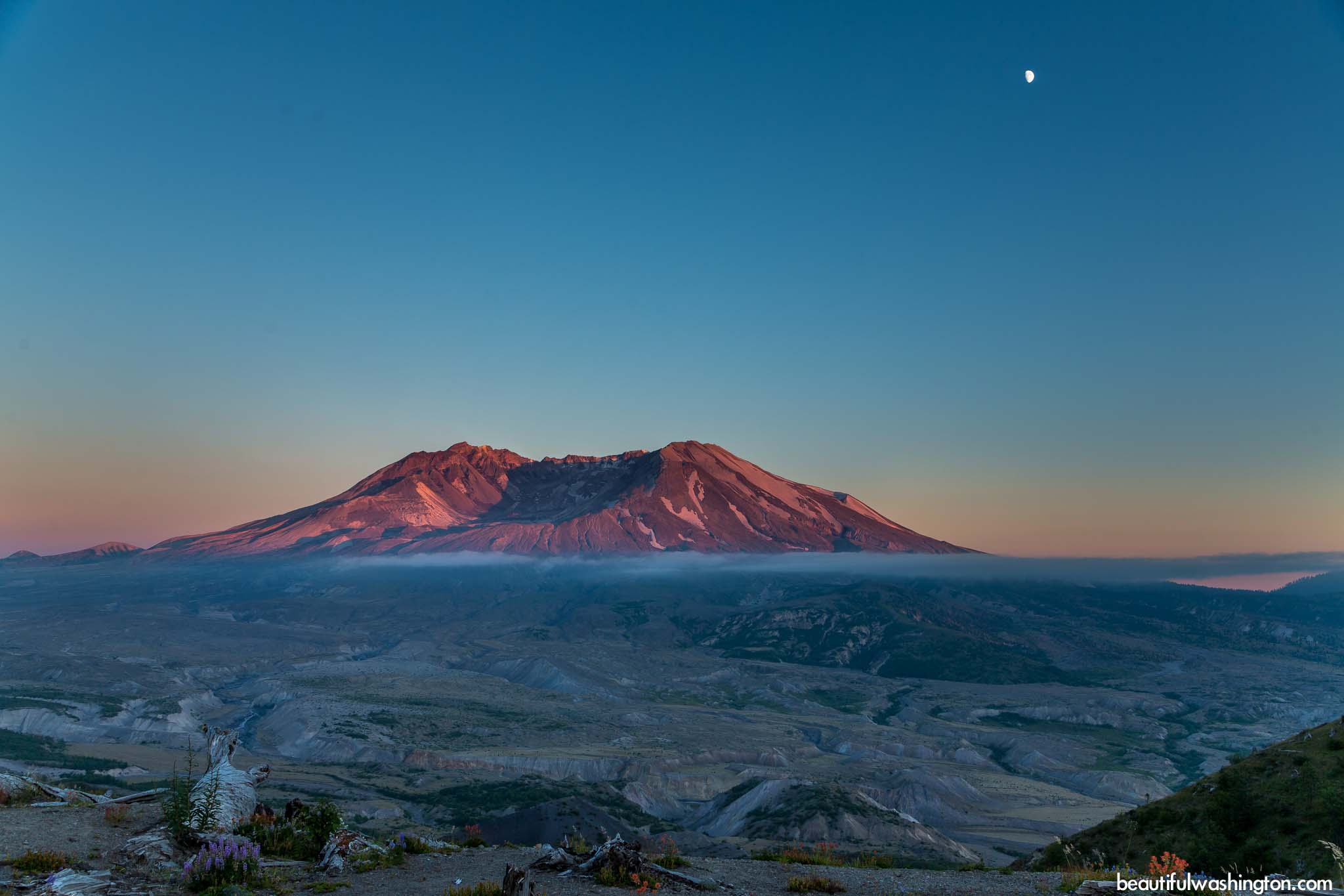 Photo from Mt. St. Helens, Johnston Ridge Observatory