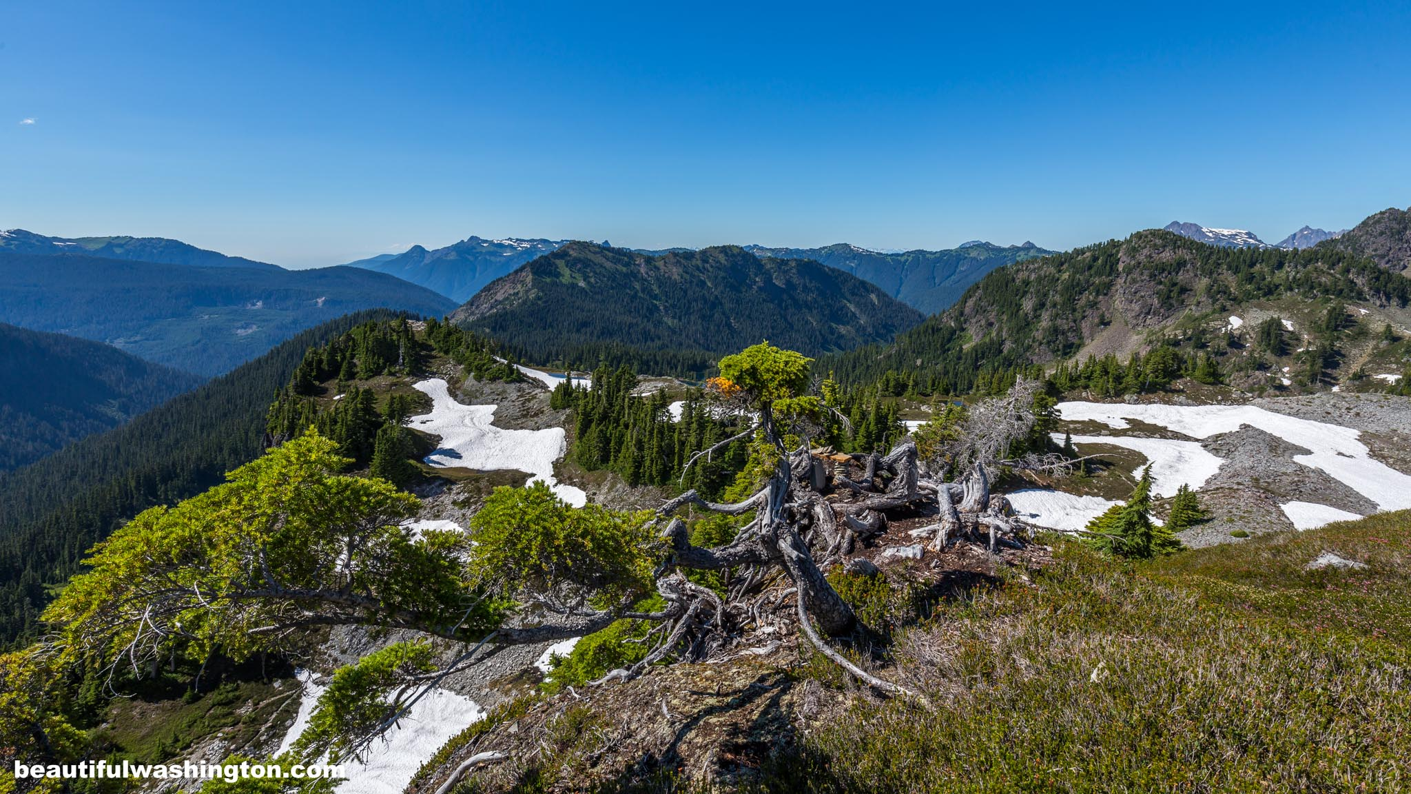 Photo from North Cascades, Mt. Baker Area, Artist Point, Table Mountain Trail