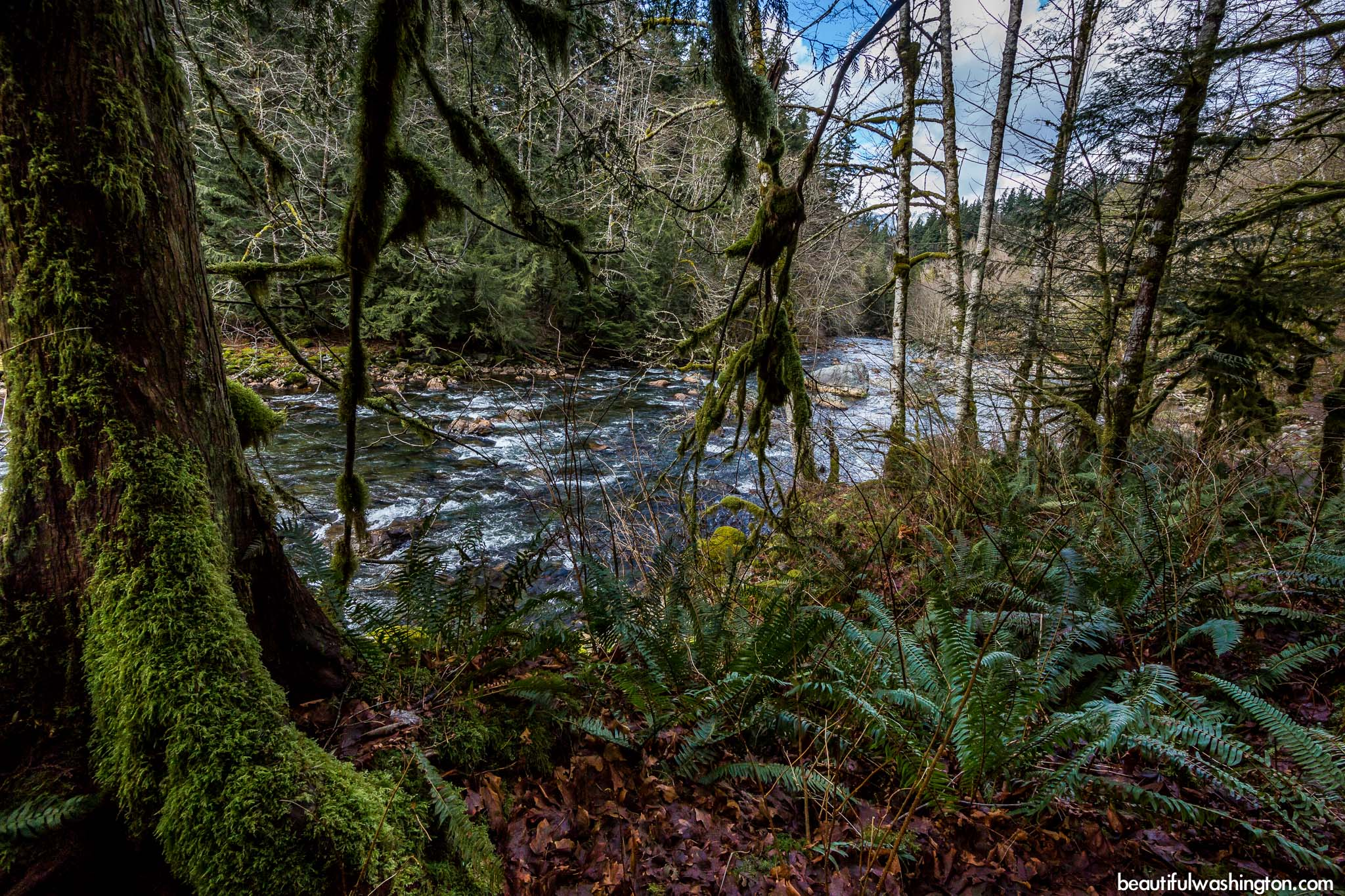 Photo from Snoqualmie Region, Twin Falls Trail