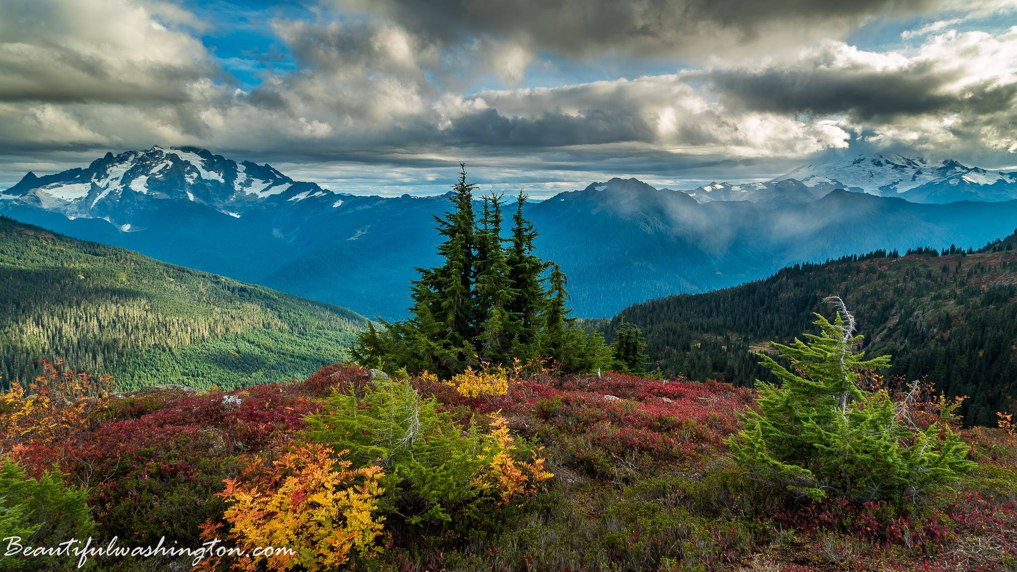 Photo from the Yellow Aster Butte Trail, Mt. Baker Area, North Cascades National Park