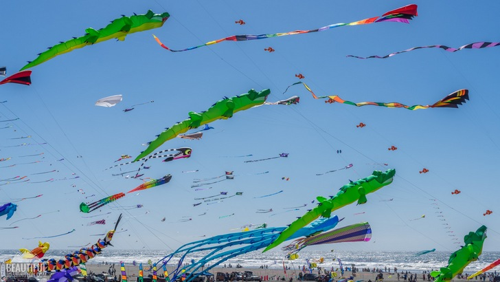 Photo taken at the Washington State International Kite Festival, Long Beach, WA