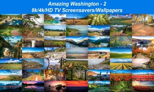 Amazing Washington 2