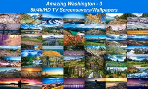 Amazing Washington 3