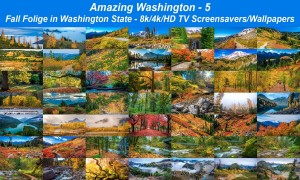 Amazing Washington 5 - Fall Foliage in Washington State