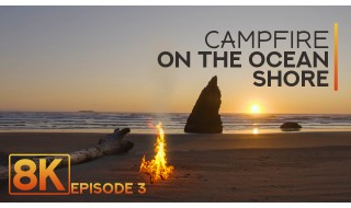 8HRS Campfire on the Ocean Shore - 8K Relaxation and Deep Sleep - Sunset and Soothing Waves Sound #3