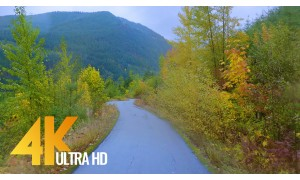 4K Fall Scenic Drive through Autumn Forest with Music - Autumn Road - Episode #4