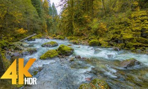 4K HDR/4K Fall Relaxation with Nature Sounds - Autumn River - 5 HRS