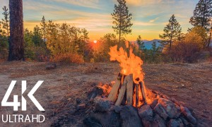 8 HOURS Calming Sounds of Crackling Campfire - 4K Peaceful Atmosphere of Campfire at Sunrise