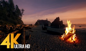 Campfire On Beach - Crackling Fire with Ocean Waves Sounds
