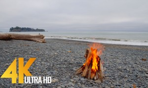 4 HRS Campfire on Rialto Beach, Olympic National Park in 4K/4K HDR