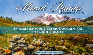 Mount Rainier National Park 4K Series Episode 2