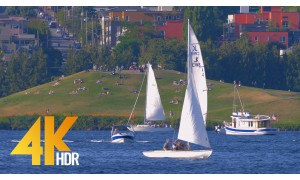 4K HDR/4K Urban Relaxation Video | Nature Sounds - Seattle Lake Union Park