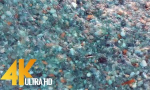 Mountain Stream 4K UHD - Nature Sounds for Relaxation and Clear Stream Views
