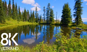 8 HOURS of Birds' Songs and Calming Water Sounds - Relaxing Ambiance of a Mountain Lake 8K Video