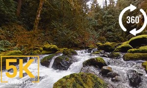5K 360 Stones of the Skagit River - VR video from Washington State, USA